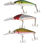 Rogue Crank Hard Body Lure 3 Pack